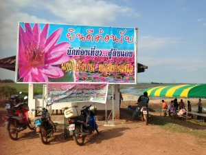The big water lily business involving the whole village on the western shore