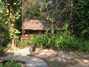 Fern Resort 5